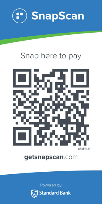 Donate to Playpumps with Snapscan